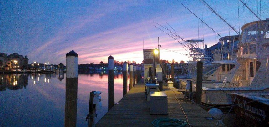 Home virginia beach fishing center va fishing charter marina for Va beach fishing center