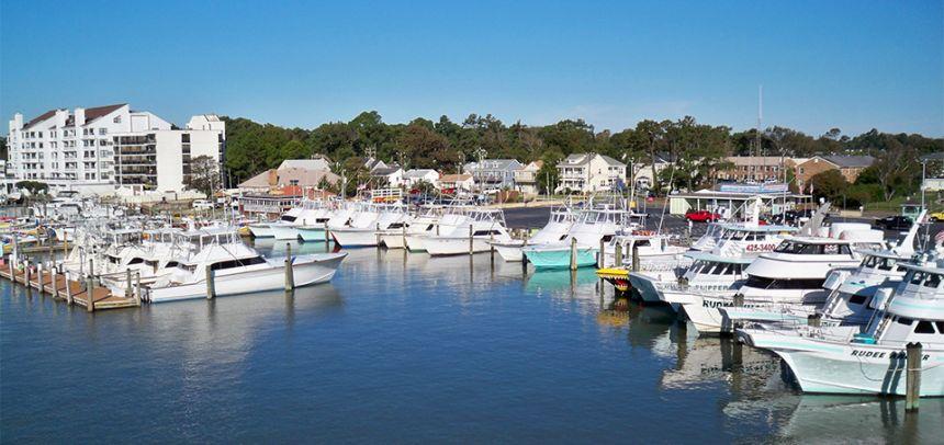 Home virginia beach fishing center ltd va fishing for Va beach fishing center