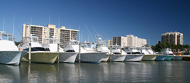Charters virginia beach fishing center ltd va fishing for Virginia beach fishing charters