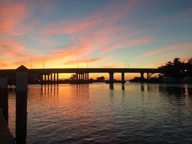 October 24 2014 virginia beach fishing center ltd for Rudee inlet fishing report
