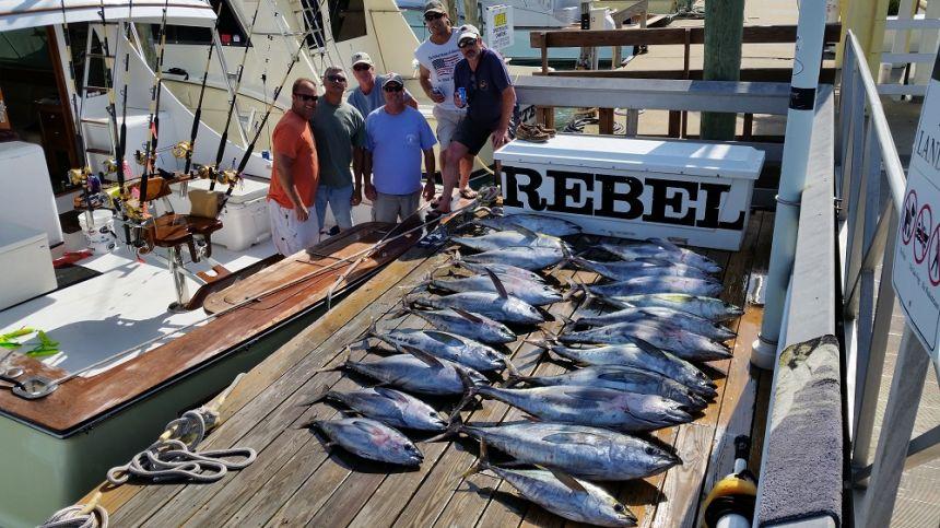 Rebel virginia beach fishing center ltd for Va beach fishing center