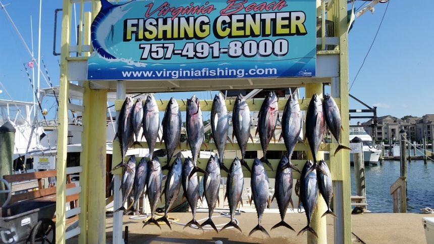 Home virginia beach fishing center ltd va fishing for Va beach fishing
