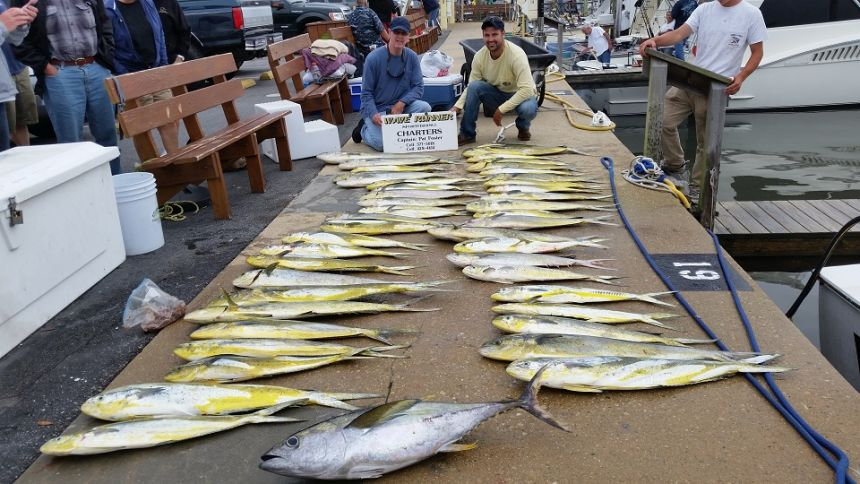 20150605 170405 virginia beach fishing center ltd for Head boat fishing virginia beach