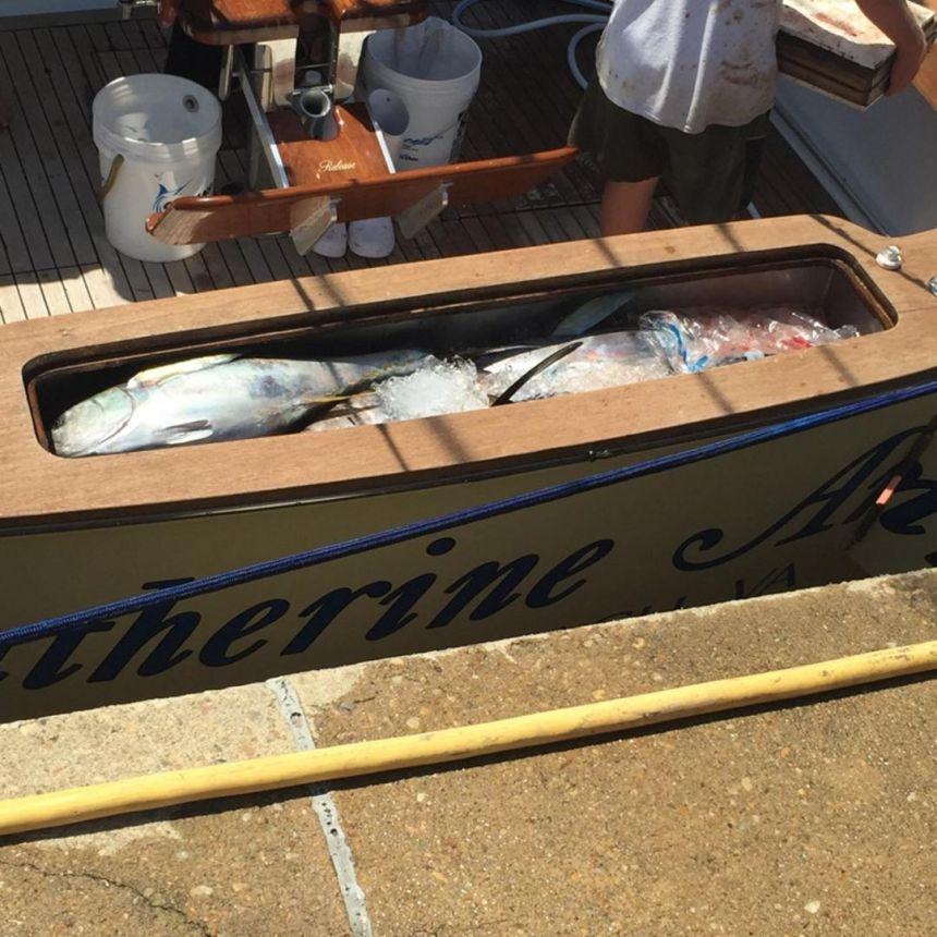 Img 2773 virginia beach fishing center ltd for Head boat fishing virginia beach
