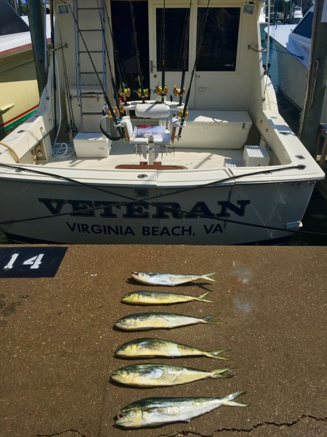 Fullsizerender virginia beach fishing center ltd for Va beach fishing center