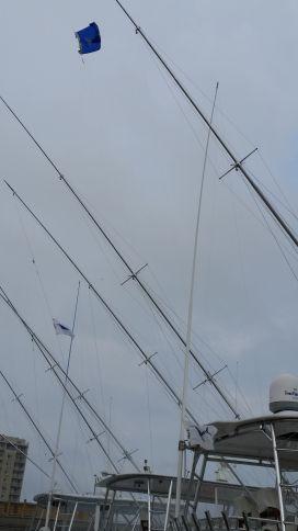 20150807 182814 virginia beach fishing center ltd for Va beach fishing center