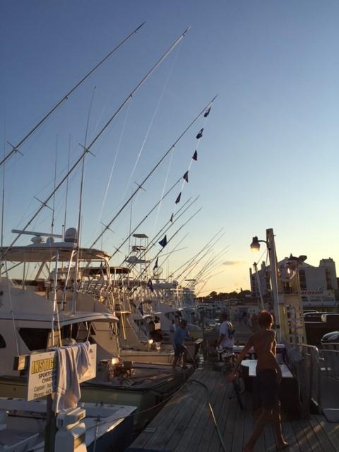 Img 0377 virginia beach fishing center ltd for Va beach fishing center