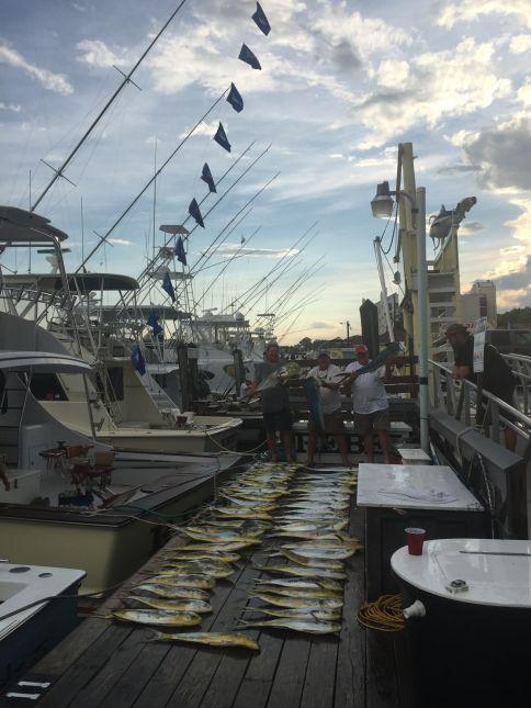 Img 0689 virginia beach fishing center ltd for Va beach fishing center