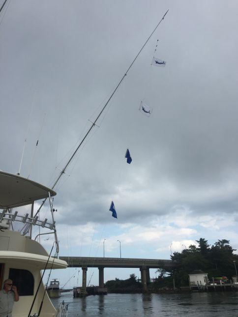 Img 1601 virginia beach fishing center ltd for Va beach fishing center