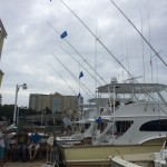 The Rebel's 4 White Marlin release flags flying