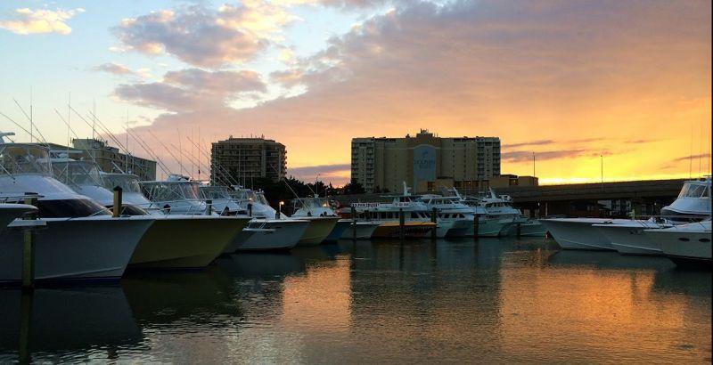 Ready to fish virginia beach fishing center ltd marina for Rudee inlet fishing