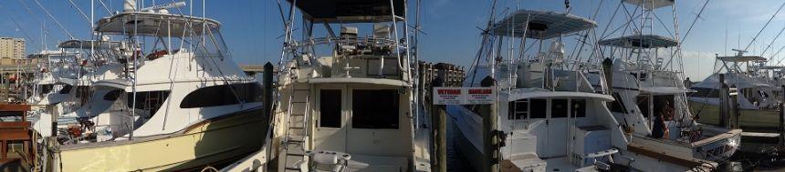 Dsc04325 virginia beach fishing center ltd for Va beach fishing center