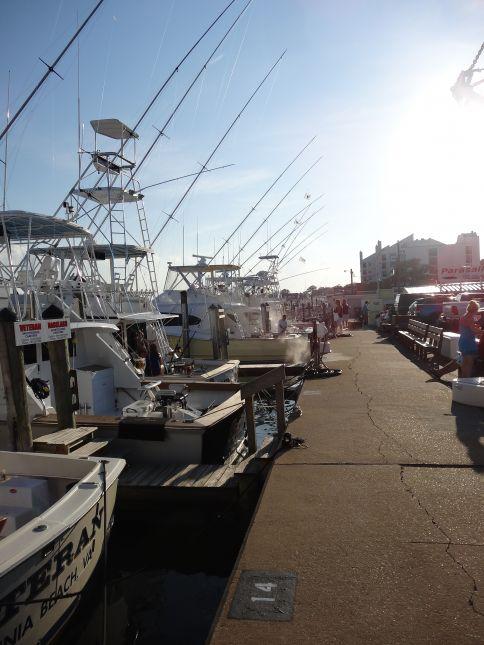 Dsc04326 virginia beach fishing center ltd for Head boat fishing virginia beach