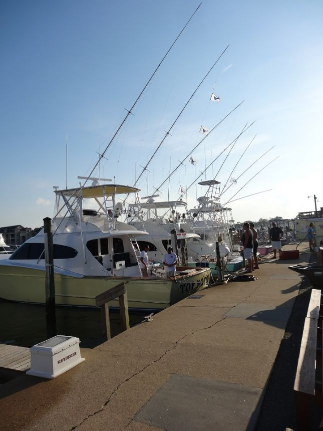 dsc04327 virginia beach fishing center ltd
