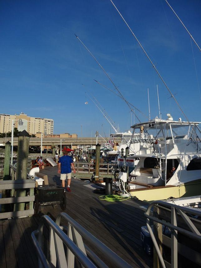 Dsc04328 virginia beach fishing center ltd for Va beach fishing
