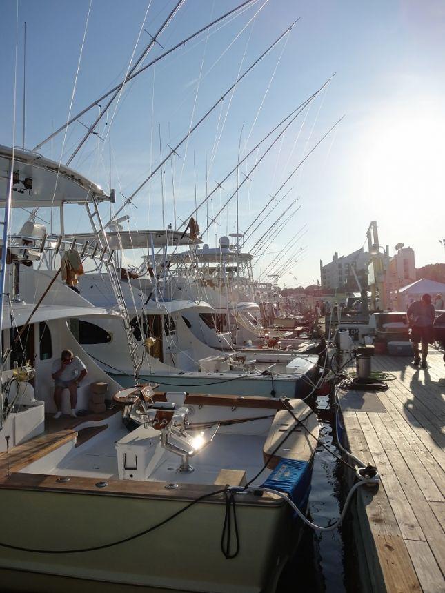 Dsc04329 virginia beach fishing center ltd for Head boat fishing virginia beach