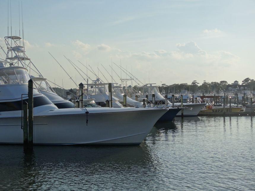 Dsc04334 virginia beach fishing center ltd for Head boat fishing virginia beach