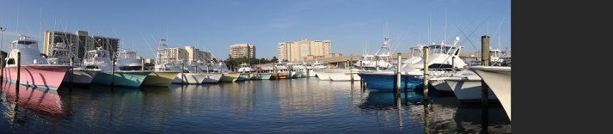 Dsc04336 virginia beach fishing center ltd for Va beach fishing center