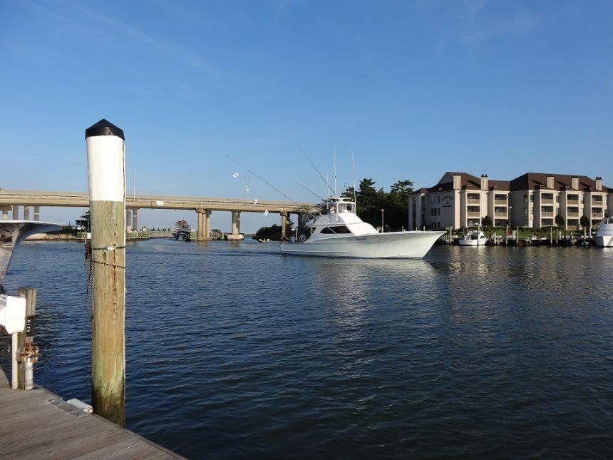 Dsc04338 virginia beach fishing center ltd for Va beach fishing center