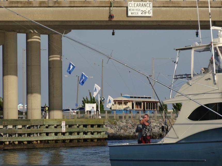 Vbbt day 2 virginia beach fishing center ltd marina and for Va beach fishing center