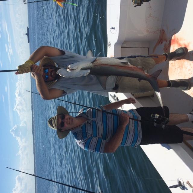 Billfish and mahi offshore strong inshore fishing for Rudee inlet fishing