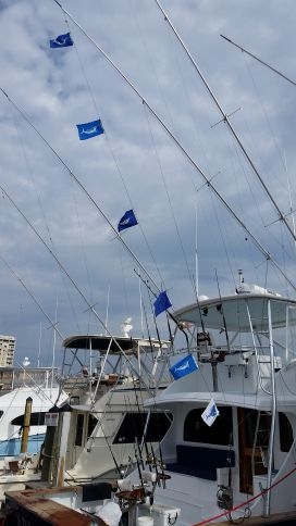 20160909 163806 virginia beach fishing center ltd for Va beach fishing center