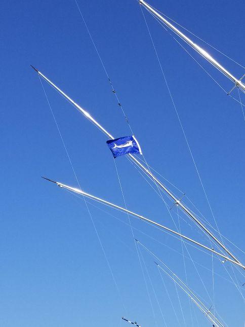 Virginia beach rudee inlet fishing charters in the autos for Va beach fishing center