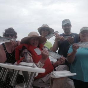 Cobia, Spanish, & Flounder!