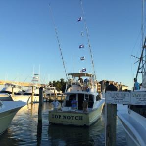 Marlin Season is Still in Full Swing!