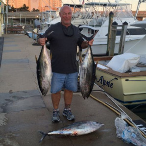 Wahoo, Yellow Fin, and Black Sea Bass