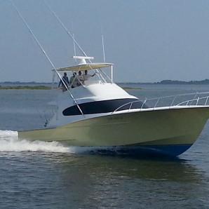Spotlight Boat: Top Notch