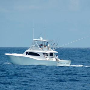 Spotlight Boat: WaveRunner