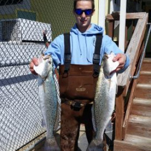 Speckled Trout and Bluefish
