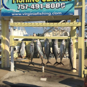 Tuna on the Docks!