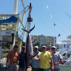 Swordfish On The Docks!
