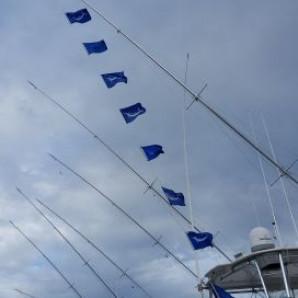 Great Inshore Bite & A Little Marlin Fishing