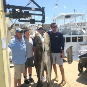 Cobia Inshore; Mahi & Bottom Fish Offshore