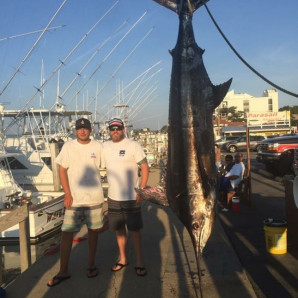 A BLUE MARLIN AND SOME BLUEFIN