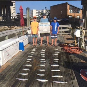 White Marlin Offshore…Bluefish, Spanish Mackerel, & A Cobia Inshore